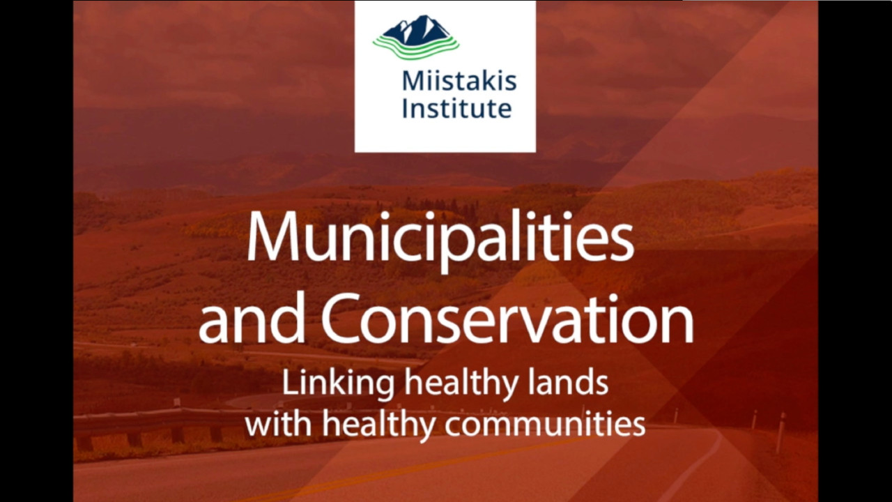 Municipalities and Conservation